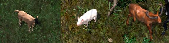 Ultima Online Publish 72 Animals