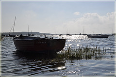 Mudeford (dawn.v) Tags: uk sea christchurch england reeds boats september sparkle dorset mudeford carob