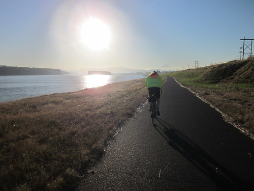 Marine Drive bikepath