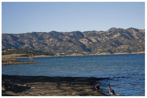 Lake Barryessa 3