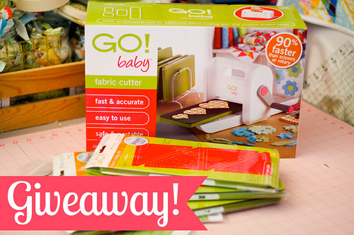 GO! Baby Giveaway & Review! by jenib320