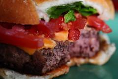 """Half-eaten"" Half Pounder (Just George 2) Tags: dof bokeh burger cheeseburger hamburger gs canoneos5dmarkii canonef100mmf28lmacroisusm"