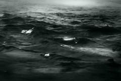...sfiancato da felici inseguimenti...happily exhausted from chasing... (UBU ♛) Tags: blue water blu blues bleu dreams blunotte blureale bluacqua ©ubu blutristezza unamusicaintesta landscapeinblues bluubu luciombreepiccolicristalli