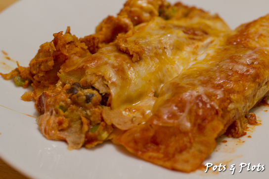 Chicken Enchiladas Supreme | Pots and Plots