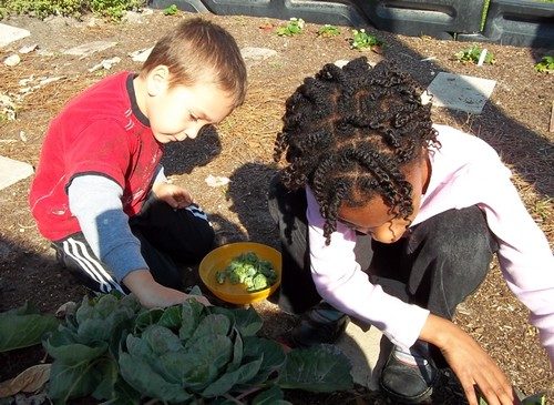 The A-B-C Garden at the Jewish Community Alliance of Jacksonville, FL helps support an early childhood curriculum.