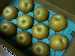 梨がたくさん届いた!