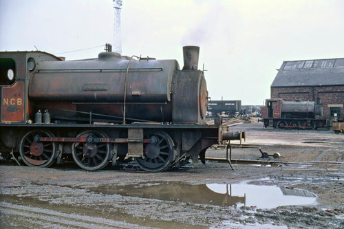 Beatrice and friend (geoffspages) Tags: railway steam beatrice ncb hunslet uksteam acktonhall