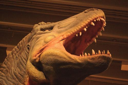 Dinosaur unadjusted