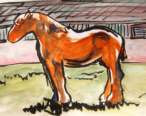 french horse france european sketch by Danalynn C