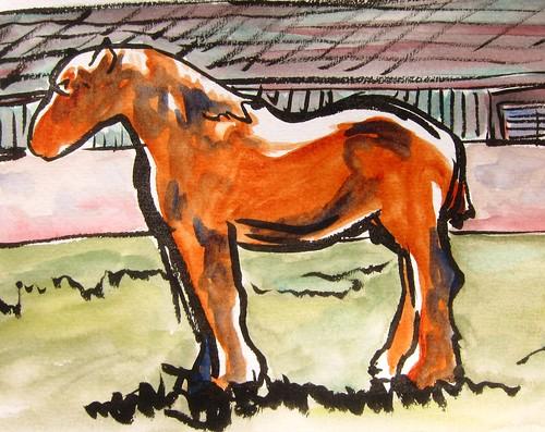 french horse france european sketch by Danalynn C
