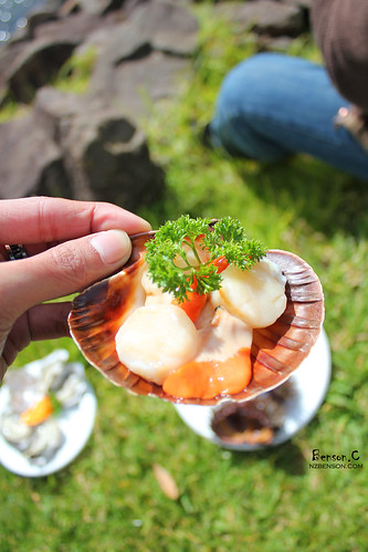 美食(NZ) | 扇貝的盛典  –  Scallop Festival at Whitianga