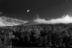 Misty morning (mailhog00) Tags: bw moon landscape blackwhite moonrise moonset