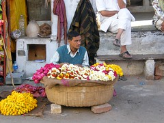 Garland Seller, Pushkar, Rajasthan, India (east med wanderer) Tags: flowers india lake pond religion pushkar hinduism puja rajasthan ghats flowerseller garlands theindiatree