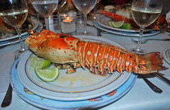 Langosta enorme (rsaezn) Tags: lobster iberostar puntacana mariscos langosta bavaro repblicadominicana langouste bavarobeach crustaceos bvaro iberostarbavaro playabvaro dominacanrepublic