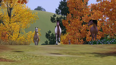 screen-sims-3-pets-pitomci_21_20110816_1269205441