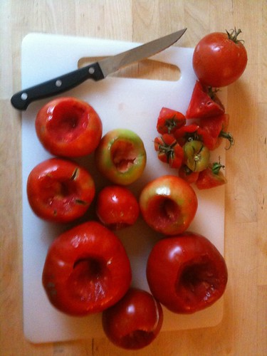 The cored tomatoes