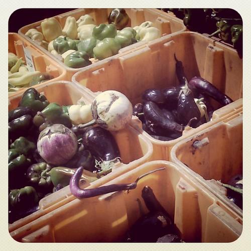 Mca farmers market