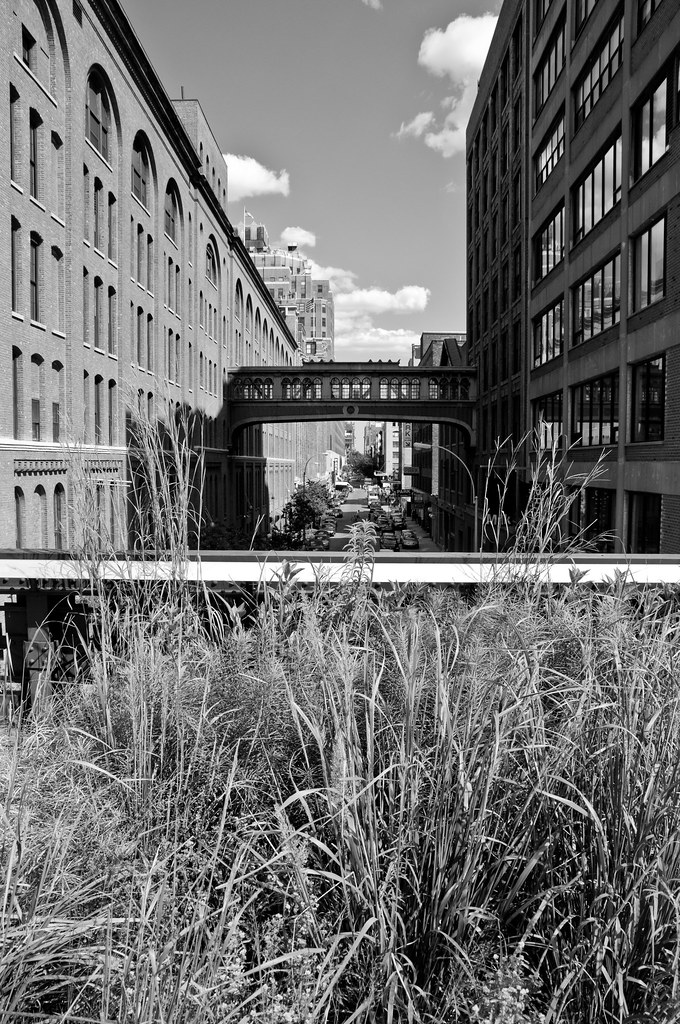 The High Line, NYC