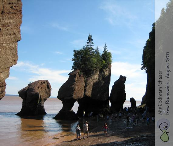HopewellRocks10