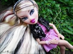Melrose (Carol Parvati ) Tags: snowboarding dolls melrose snowboard mga picnik bratz lilee playsportz carolparvati