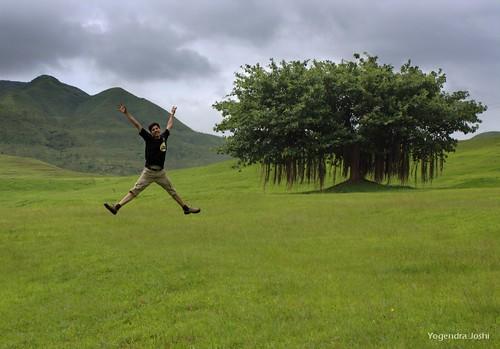 I am Free by Yogendra174