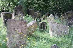 "Old Jewish Cemetery (Starý židovský hřbitov), Prague (Prag/Praha) • <a style=""font-size:0.8em;"" href=""http://www.flickr.com/photos/23564737@N07/6083174172/"" target=""_blank"">View on Flickr</a>"