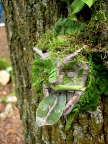 Green Man Tree Gargoyles From The Just So Festival