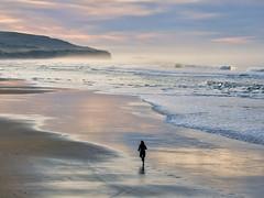 Beach Run (Ian@NZFlickr) Tags: ocean sun beach sunrise bravo waves pacific stclair head south nz otago dunedin lawyers aotearoa jogger glint