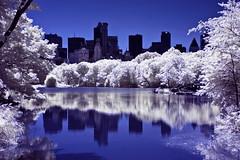 Hurrican't (A. Strakey) Tags: nyc newyorkcity newyork ir centralpark manhattan infrared gothamist cp gotham curbed newyorkny thelake centralparkwest essexhouse theramble thebigapple midtownmanhattan convertedinfrared