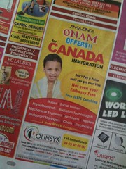Immigration Discounts?