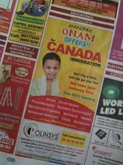 Immigration Discounts?