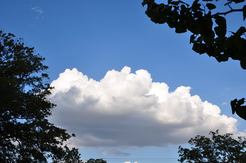 Poofy cloud Aug 2011