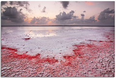 Bloody salt (Antonio Carrillo (Ancalop)) Tags: light sunset sea vacation sky espaa cloud seascape color art beach nature canon geotagged atardecer coast mar spain europa europe salt playa salinas tokina alicante filter cielo nubes verano lopez antonio 1224mm saltmine sal carrillo torrevieja summe cokin 50d nd8 gnd8 ancalop