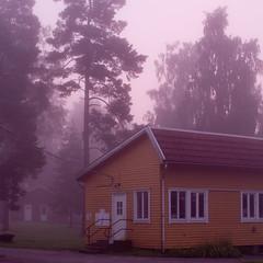 Västergötland V (jpk.) Tags: 2011 august canoneos7d sl11 schweden sommerlager ulricehamn ©janphilipkopka nebel vorsonnenaufgang bäume dunst haus gelb violett weis rasen ef235mm