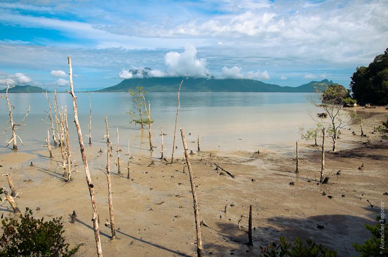 Национальный парк Бако на Борнео