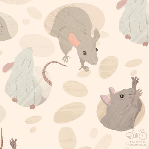 2011_09_06_Rodents_LindsayNohl_Sm_detail