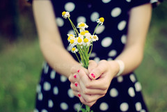 This is for you (RL Stars) Tags: auto flowers flores daisies vintage 50mm hands dof dress pentax bokeh creative manos desenfoque bunch dots ramo photoart margaritas porrio chinon lunares f17 creativas k200d tecendoredes rlstars