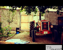 asmaaltı (TE PHOTO) Tags: old tractor garden ferguson grapevine massey masseyferguson