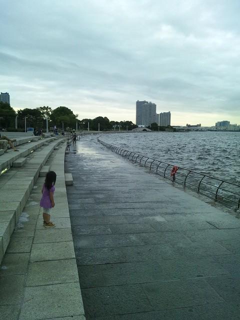 臨港パークの歩道が水没している…の写真