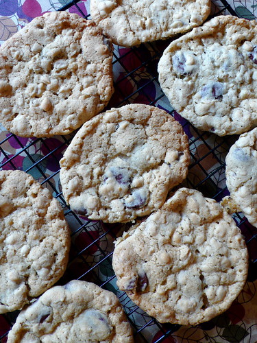 Giant Chocolate Chip Cookies make the day suddenly better