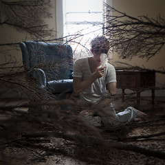 The History of What Came Before (Rob Woodcox) Tags: trees selfportrait history home pine forest dark floor branches surreal eerie conceptual 52weekproject teleidescope robwoodcox robwoodcoxphotography latetoclassforthisworthit