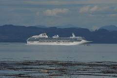 Malcolm Island (reggietamper) Tags: malcolmisland