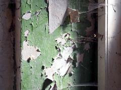 Peeling (onnola) Tags: green abandoned germany lost deutschland peeling paint decay grn manor farbe verlassen urbex mecklenburgvorpommern abblttern verfall mecklenburgwesternpomerania leerstand farbschichten lostplace leerstehend gutshaus gutshausn