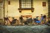 Las 1001 bicicletas de Lucca (osolev) Tags: street italy calle europa europe italia lucca toscana bicicletas italie osolev tetured magicunicornverybest magicunicornmasterpiece trollieexcellence