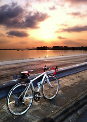 My fav hobbies: Cycling and Photography