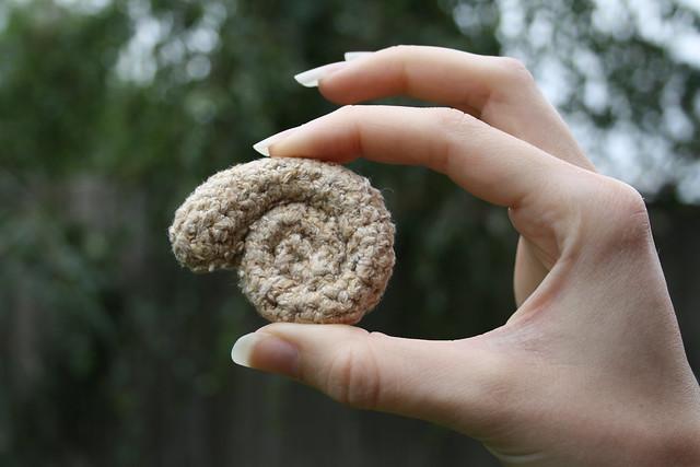 Ammonite held up