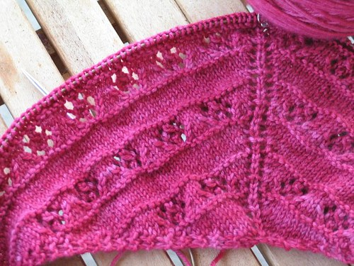 Roses are Pink Too! Shawl