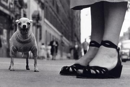 Elliott Erwitt, New York City, 1946