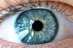 Blue Macro eye (Teo Morabito) Tags: blue portrait macro reflection eye self photo mac nikon colorful flickr edited teo using sharing macroeye d90 morabito