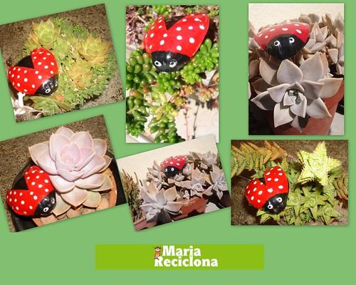 artesanato no jardim:Maria Reciclona **: Pousou Joaninha no jardim da Maria Reciclona.